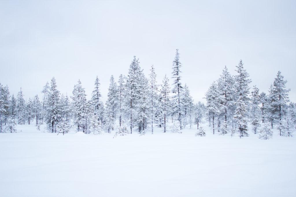 Postcard Lapland