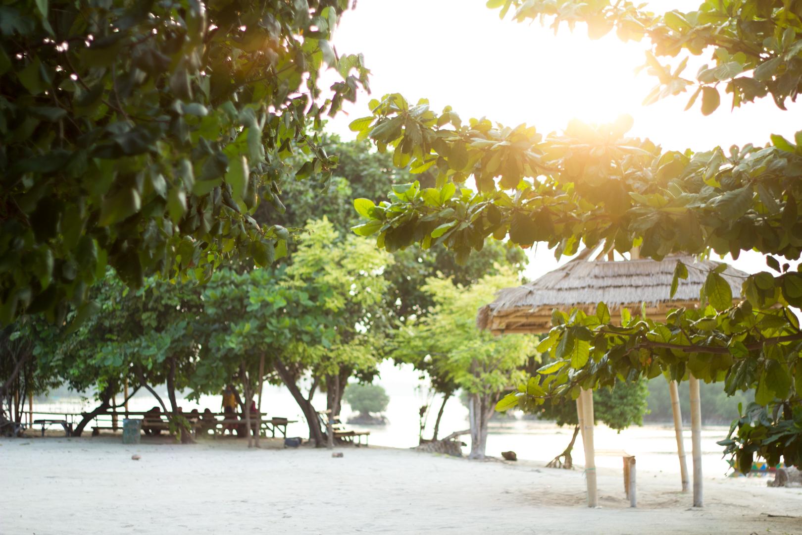 travelandlipsticks.com cover image