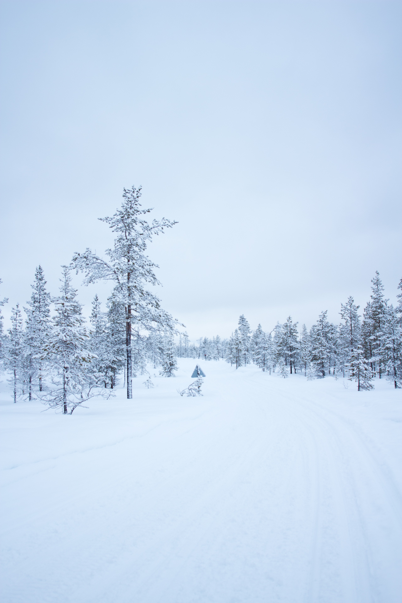 Snowmobile Tour Through Finnish Lapland