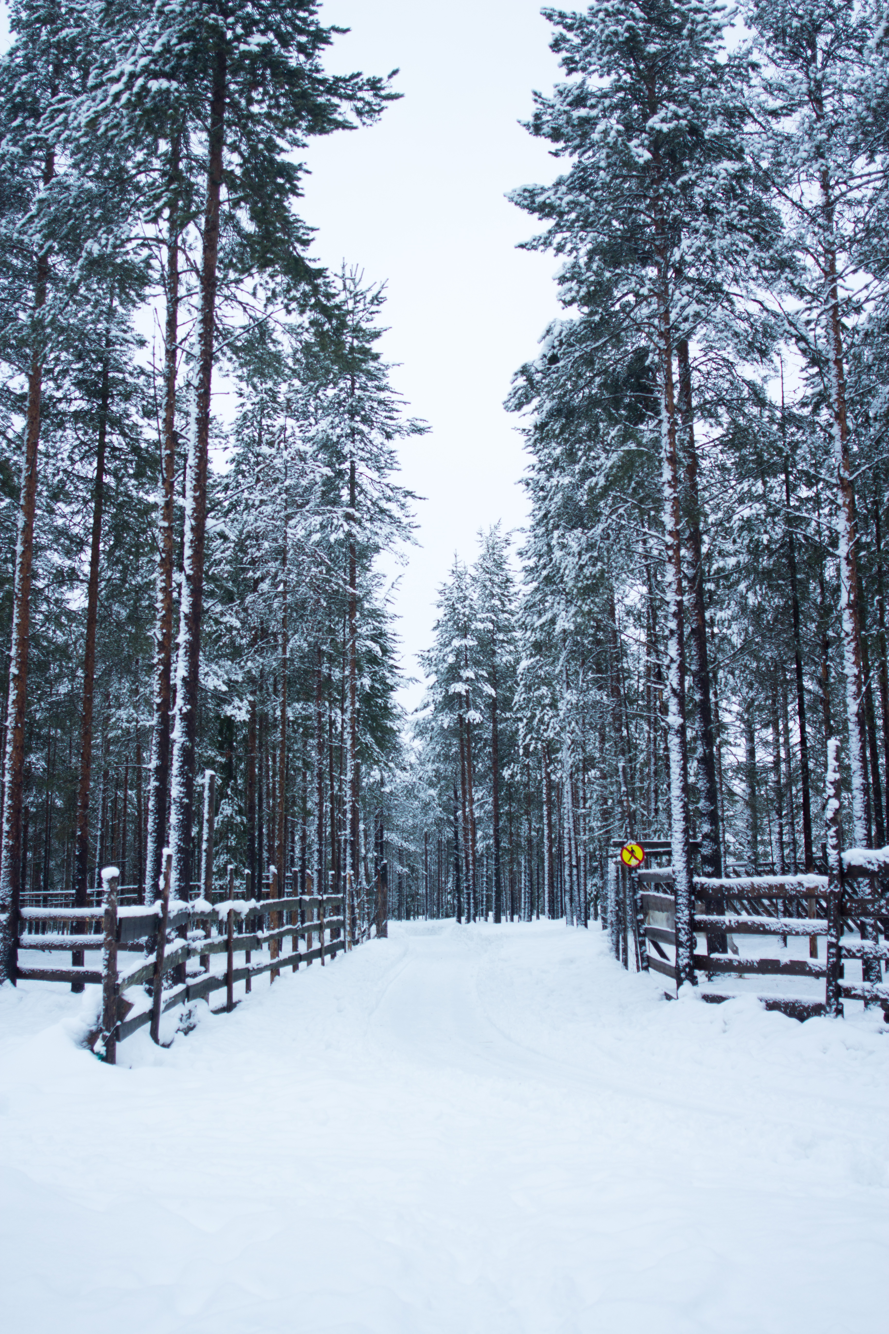 How To Survive An Ice-Cold Finnish Winter