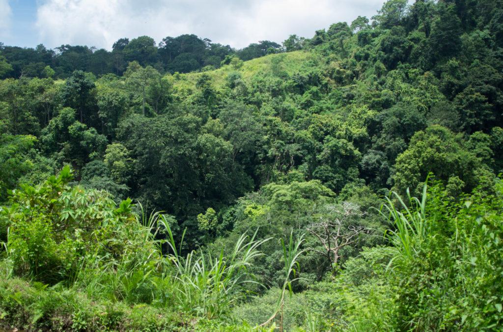 Hiking the Foothills of Rinjani