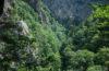 Hiking Harz Mountain