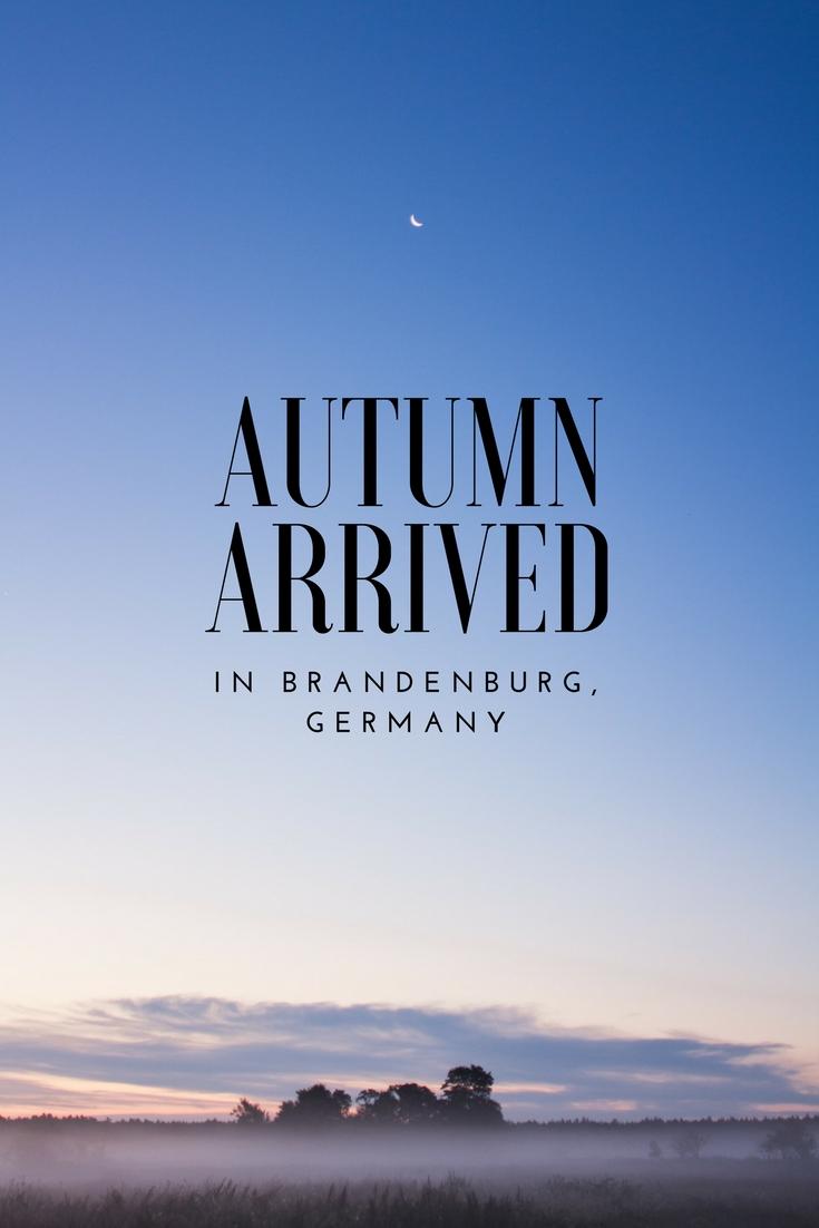 Autumn Arrived in Brandenburg, Germany